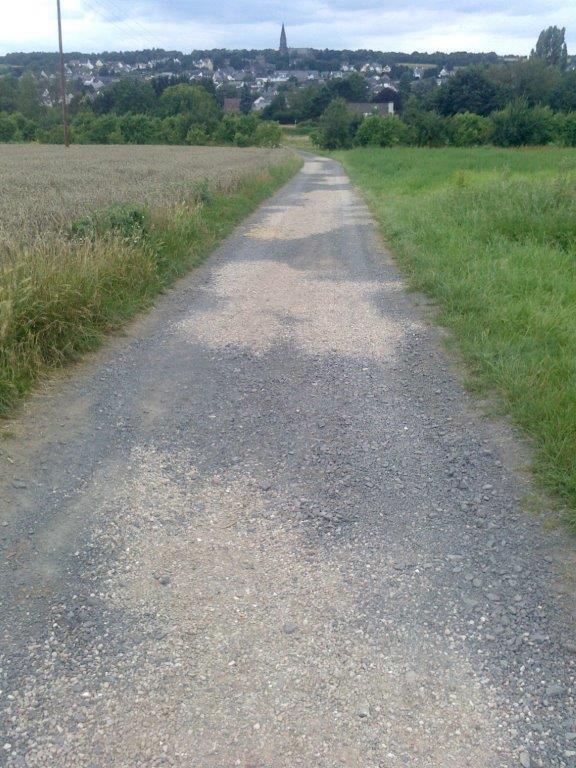 Wanderweg August 009